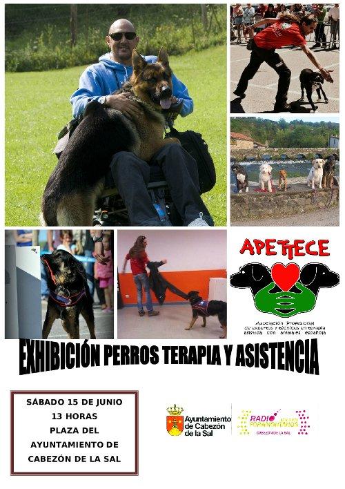 Cartel exhibición perros terapia y asistencia