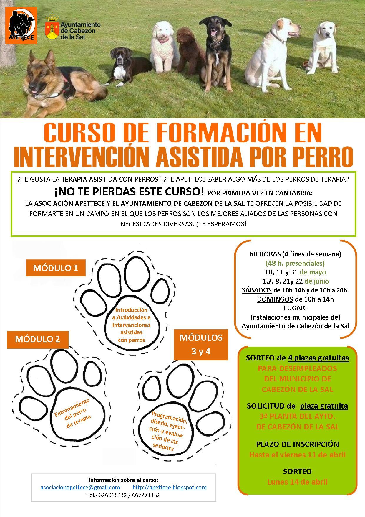 http://www.cabezondelasal.net/wp-content/uploads/2014/03/curso-intervenci%C3%B3n-asistida-por-perro.jpg