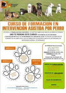 curso intervención asistida por perro